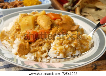 Chicken curry over steamed white rice. - stock photo