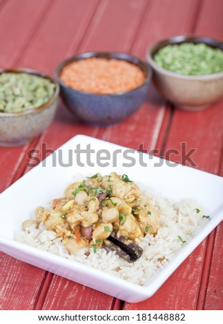Chicken curry served on a bed of rice - stock photo