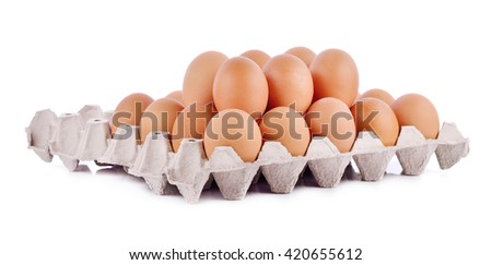 Chicken Egg , egg