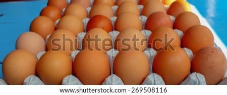 chicken eggs in carton box - stock photo
