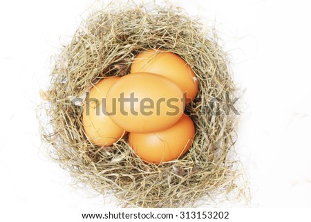 Chicken eggs in nest isolated on white