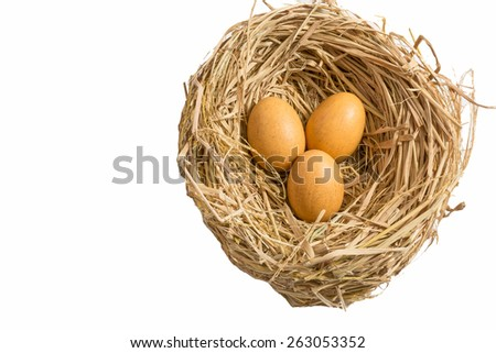 Chicken eggs in the straw in white isolate