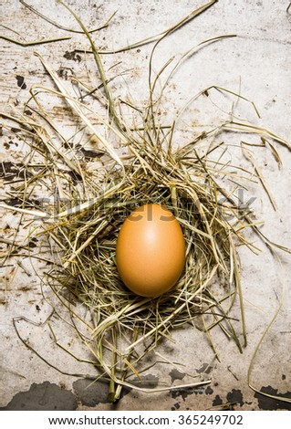 Chicken eggs with hay. On the rustic background. Top view