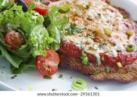 Chicken parmigiana with salad.  Melting parmesan and mozzarella cheeses over an Italian tomato sauce. - stock photo