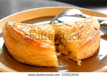 Chicken pie - stock photo