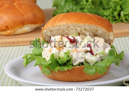 Chicken salad with lettuce on a plate - stock photo