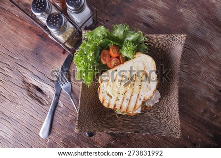 Chicken sandwich  - stock photo