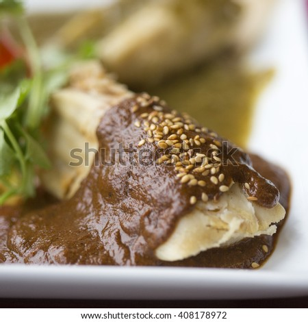 Chicken tamales with mole sauce and tomatillo sauce  - stock photo