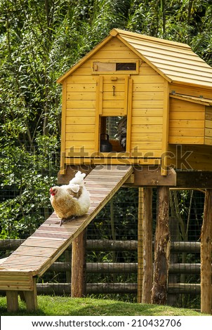 Chicken House Stock Images Royalty Free Images Amp Vectors