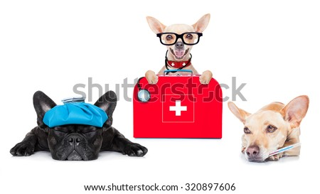 chihuahua dog as a medical veterinary doctor with stethoscope and first aid kit and a sick ill dog ,isolated on white background - stock photo
