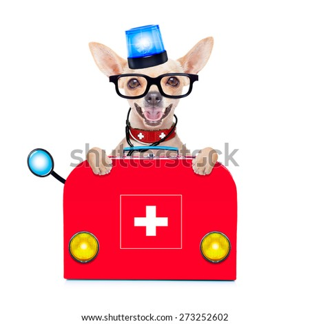 chihuahua dog as a medical veterinary emergency doctor with stethoscope and first aid kit behind a white and blank banner  and blue lights, isolated on white background - stock photo