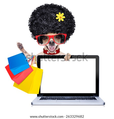 chihuahua dog with shopping bags behind laptop pc computer screen or tablet ,  ready for discount and sale at the  mall, isolated on white background - stock photo