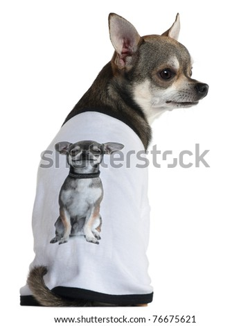 Chihuahua dressed with a t-shirt with a photo of himself, 3 years old, in front of white background - stock photo