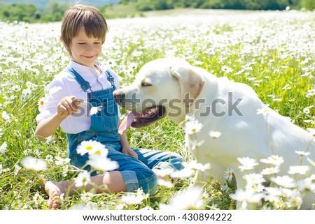 Child and dog - stock photo