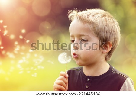 Child blowing dandelion in a meadow at sunset - stock photo