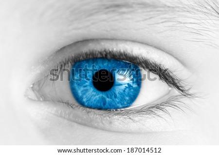 Child blue eye looking at camera close up - stock photo