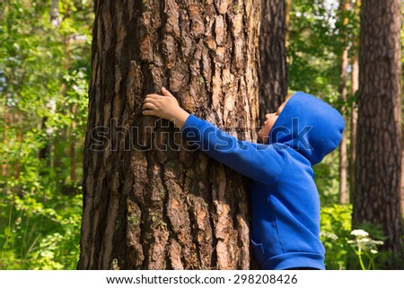 Child (boy, hands) hugging pine, playing and having fun outdoor in summer forest (park). Environmental protection concept. - stock photo