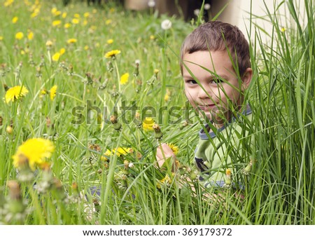 Child boy sitting in a long grass on meadow with dandelions - stock photo