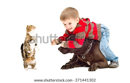 Child, dog and cat playing together isolated on white background  - stock photo
