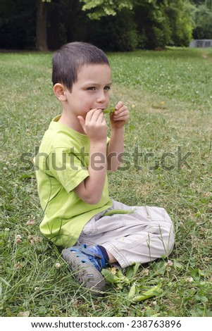 Child eating fresh green peas from a pea pod while sitting on a grass in garden or nature. - stock photo