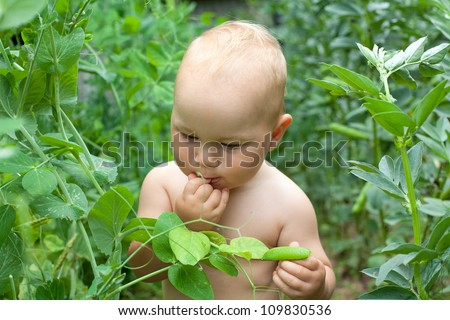 child eating green peas in the garden