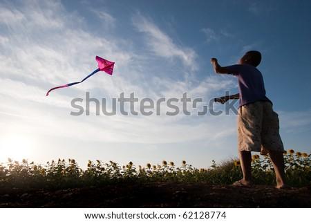 child flying a kite - stock photo
