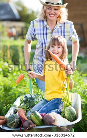 Child girl having fun in a wheelbarrow pushing by mother in domestic garden on warm sunny summertime.