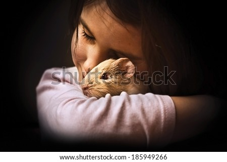 Child-girl with her guinea pig - stock photo
