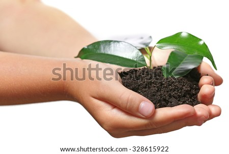 Child handful with soil and small green plant isolated on white - stock photo