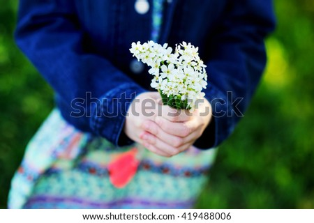 Child hands holding a flowers of bird-cherry tree - stock photo