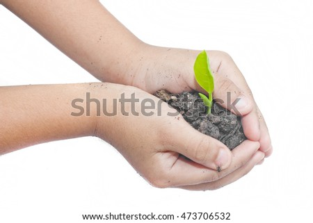 Child hands holding a plant growing out of the ground on white background.