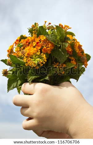 Child holding a bouquet of wild flowers - stock photo