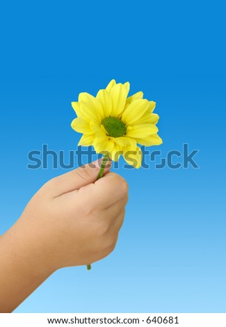 Child holding an yellow daisy - stock photo