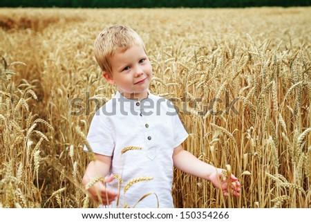 Child in summer wheat field - stock photo