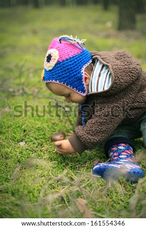 Child in the forest looking for mushrooms - stock photo