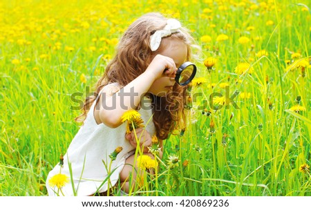 Child looking through magnifying glass on yellow dandelion flowers - stock photo