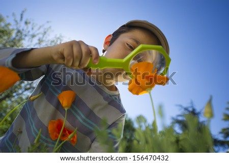 Child observing nature with a magnifying glass - stock photo