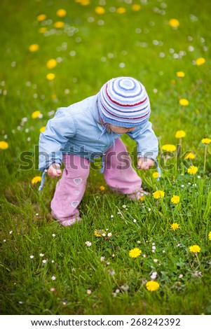 Child picking flowers. Sweet little girl picks flowers on a spring green meadow. Shallow depth of field - stock photo