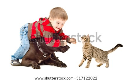 Child playing with dog and cat, isolated on white background - stock photo