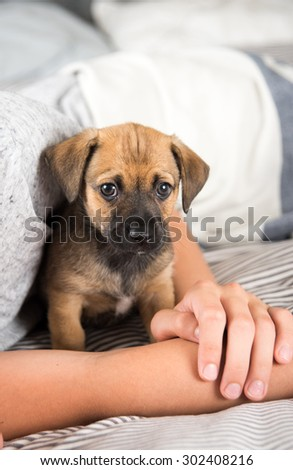 Child Protecting Brown Puppy with Floppy Ears