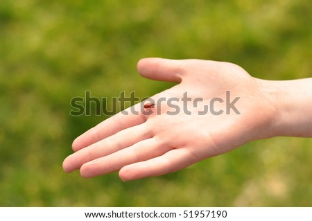 child's hand and a bug