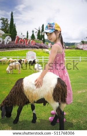 Child's hand holding sheep soft.Focus on hands and hair of sheep.Cute Asian children. Family photo. Family photo for the background. Happy family. Young Asian model
