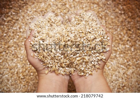 child's hands holding milled grain - stock photo