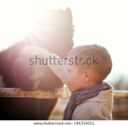 Child stroking pony in mini zoo, love and affection - stock photo