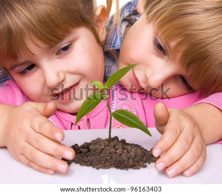children are grown plant - stock photo