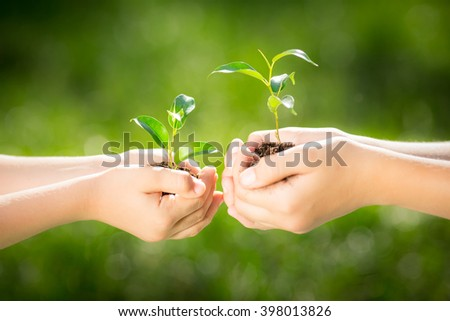Children holding young plant in hands against green spring background. Earth day ecology holiday concept - stock photo