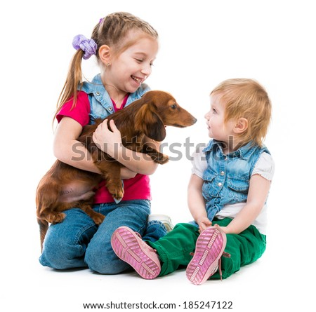children playing with a red dachshund on white background - stock photo