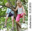 Children sitting on a branch of a tree - stock photo