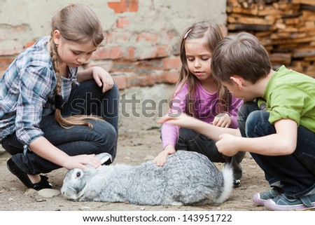 Children stroking rabbit, which has been let out of his hutch for a run - stock photo