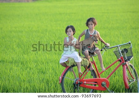 children with dog in paddy field. - stock photo